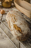 Homemade rustic bread, baked in oven Royalty Free Stock Photos