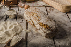 Homemade rustic bread, baked in oven Royalty Free Stock Photography