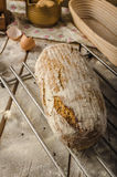 Homemade rustic bread, baked in oven Stock Photography