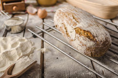 Homemade rustic bread, baked in oven Stock Photos