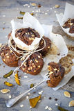 Homemade rustic muffins with pumpkin chocolate and oat flakes packaged with greasproof paper Royalty Free Stock Photos