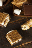 Homemade S'more with chocolate and marshmallow Stock Images