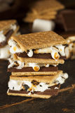 Homemade S'more with chocolate and marshmallow Royalty Free Stock Photos