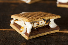 Homemade S'more with chocolate and marshmallow Stock Photography