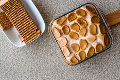 Homemade S`mores Dip / Baked Marshmallow with biscuits or crackers. copy space. Stock Images