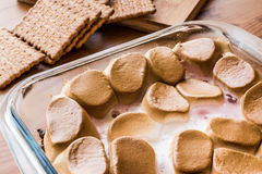 Homemade S`mores Dip / Baked Marshmallow with biscuits or crackers. stock photography