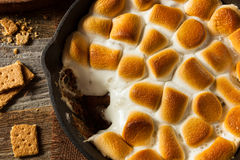 Homemade S'mores Dip with Graham Crackers Stock Images