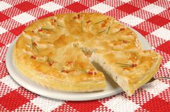 Homemade salad pie - quiche Royalty Free Stock Photos