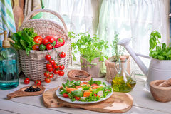 Homemade salad with salmon and vegetables Royalty Free Stock Image