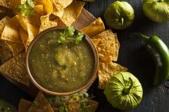 Homemade Salsa Verde with Cilantro Royalty Free Stock Photo