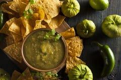 Homemade Salsa Verde with Cilantro Royalty Free Stock Photos