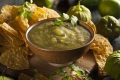 Homemade Salsa Verde with Cilantro Stock Image