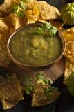 Homemade Salsa Verde with Cilantro Stock Images