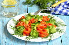 Homemade salted salmon with cucumber and dill. Royalty Free Stock Photo