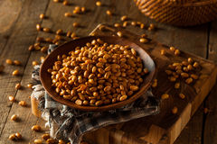 Homemade Salted Soy Nuts Royalty Free Stock Images