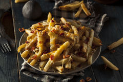 Homemade Salty Cheese French Fries Stock Image