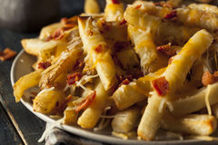 Homemade Salty Cheese French Fries Royalty Free Stock Photos