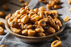 Homemade Salty Corn Nuts Stock Images