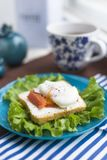 Homemade Sandwich with egg and salmon Royalty Free Stock Photos