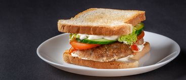 Homemade sandwich made of toast bread, fried egg, melted cheese, tomatoes, cucumber, lettuce, burgers and mayonnaise sauce. Sandwich on a white plate, on a royalty free stock images