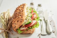 Homemade sandwich with roasted chicken, lettuce and tomato royalty free stock photo