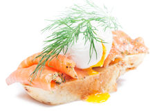Homemade sandwich with salmon. Poached egg and wholegrain bread on white royalty free stock photos
