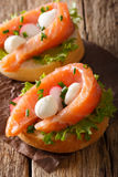 Homemade sandwiches with smoked salmon, mozzarella and radish cl Royalty Free Stock Photography