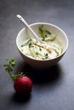 Homemade sauce with French mustard Royalty Free Stock Photo