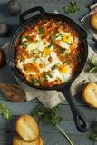 Homemade Saucy Shakshuka with Eggs. Cilantro and Tomatoes Royalty Free Stock Photography
