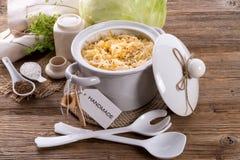 Homemade sauerkraut Royalty Free Stock Photos