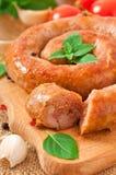Homemade sausage Royalty Free Stock Photos