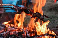 Homemade sausages and fried bacon cooked on an open fire in the mountains in nature royalty free stock photography