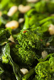 Homemade Sauteed Green Broccoli Rabe. With Garlic and Nuts Royalty Free Stock Photos