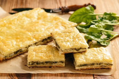 Homemade savory pie  with spinach and ricotta. Homemade savory pie  with spinach and ricotta Royalty Free Stock Photo