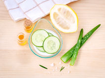 Homemade skin care with natural ingredients  aloe vera ,lemon ,c Stock Images