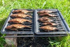 Homemade smoked fresh fish Stock Photography