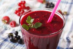 Homemade smoothies with raspberries and currants horizontal Stock Images