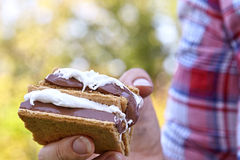 Homemade Smores royalty free stock image
