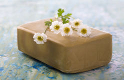 Homemade Soap with chamomille Flowers Stock Photos