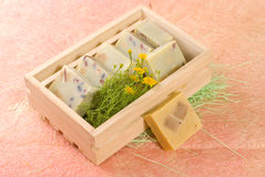 Homemade soap in wooden box Stock Image