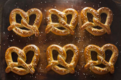 Homemade Soft Pretzels with Salt Stock Image