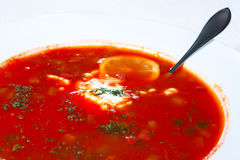 Homemade solanka soup with lemon and sour cream Royalty Free Stock Photos