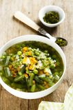 Homemade soup with fresh spring vegetables Royalty Free Stock Photo