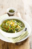 Homemade soup with fresh spring vegetables Stock Image