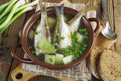 Homemade soup of river fish in the bowl Stock Images