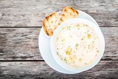 Homemade soup with salmon and cream with croutons Royalty Free Stock Photos
