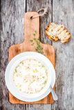 Homemade soup with salmon and cream Stock Photography