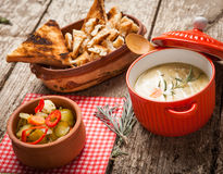 Homemade soup Royalty Free Stock Images