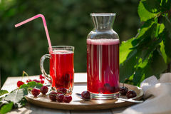 Homemade sour cherry compote in glass cup with jar on bamboo tray. And cherries by side Stock Images