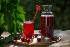 Homemade sour cherry compote in glass cup with jar on bamboo tray. And cherries by side Stock Photos
